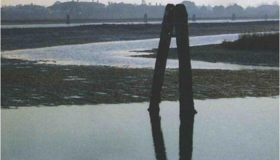 immagine di locandina
